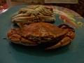 ugotowane kraby