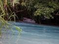 Agua Azul 1