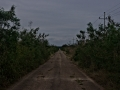lonely_road