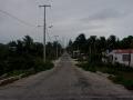 palapas_road